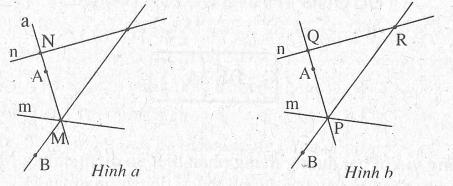 Bài tập tuần 3 hình học 6